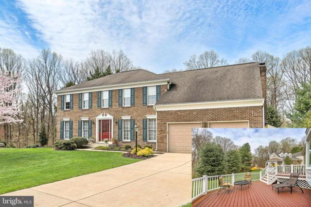 3117 Story Book Court, ELLICOTT CITY, MD 21042 (#MDHW261594) :: The Bob & Ronna Group