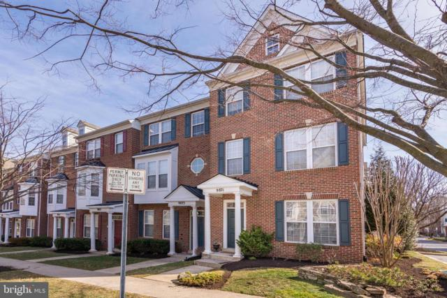 9821 Darcy Forest Drive, SILVER SPRING, MD 20902 (#MDMC652074) :: Dart Homes