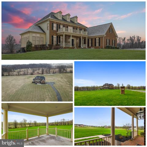 35443 Glencoe Court, ROUND HILL, VA 20141 (#VALO380574) :: SURE Sales Group