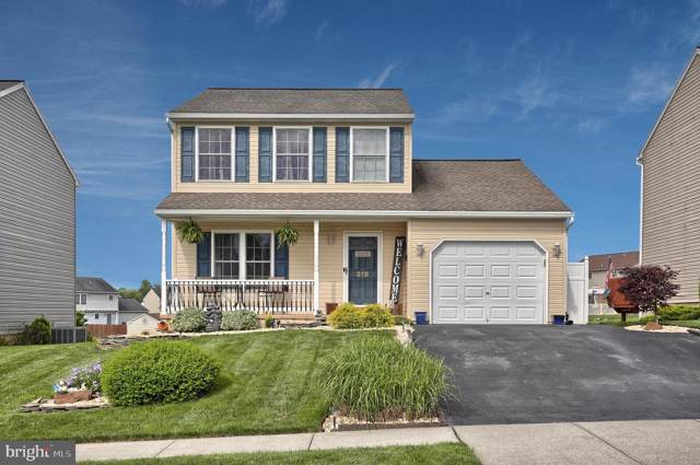 319 Swatara Creek Drive, JONESTOWN, PA 17038 (#PALN106390) :: LoCoMusings