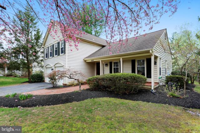 20413 Oak Bluff Drive, MONTGOMERY VILLAGE, MD 20886 (#MDMC652414) :: Great Falls Great Homes