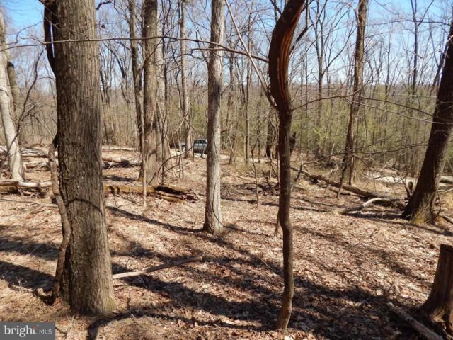 Lot 27 Maverick Trail, HEDGESVILLE, WV 25427 (#WVMO115136) :: SURE Sales Group