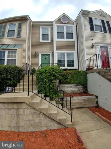 13942 Big Yankee Lane, CENTREVILLE, VA 20121 (#VAFX1053332) :: Browning Homes Group