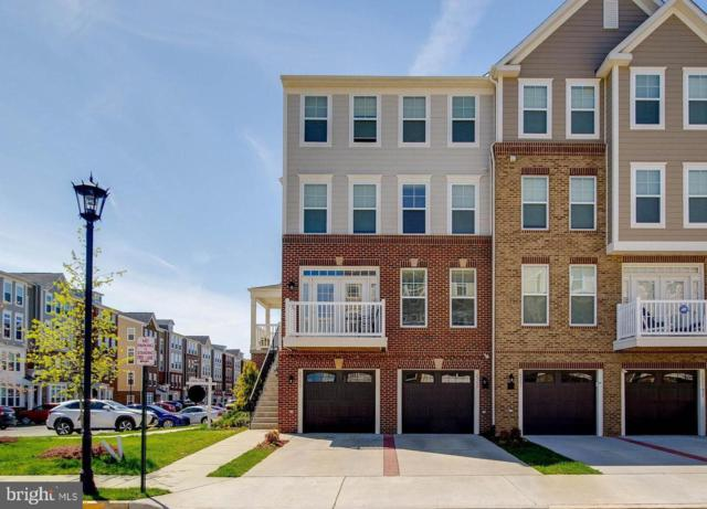 25257 Orchard View Terrace, CHANTILLY, VA 20152 (#VALO380652) :: AJ Team Realty