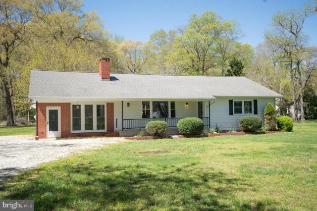 5510 Oyster Shell Point Road, EAST NEW MARKET, MD 21631 (#MDDO123356) :: The Daniel Register Group