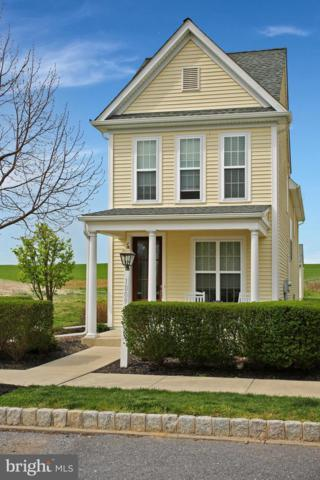 1009 Madelyn Street, MOUNT JOY, PA 17552 (#PALA130528) :: Younger Realty Group