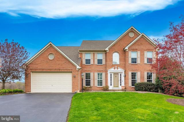 3 Ivy Hill Drive, MIDDLETOWN, MD 21769 (#MDFR244344) :: Erik Hoferer & Associates