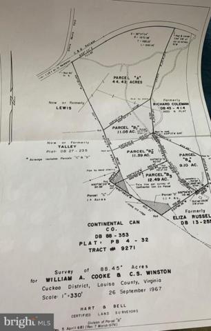 Shelton Lane, LOUISA, VA 23093 (#VALA118898) :: RE/MAX Cornerstone Realty