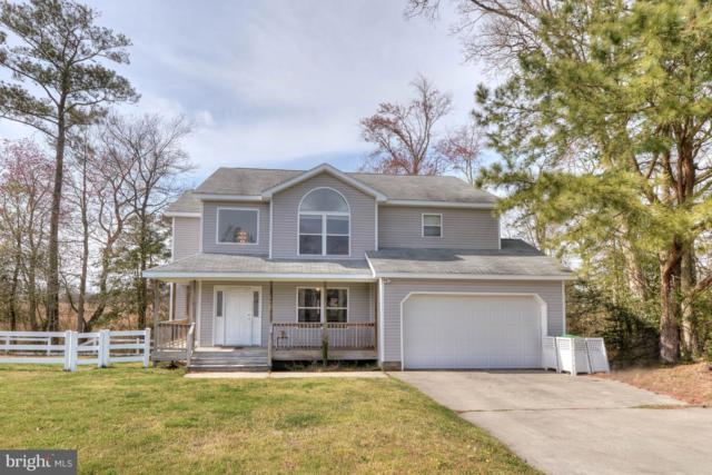 35711 Seagull Road, SELBYVILLE, DE 19975 (#DESU138404) :: The Windrow Group