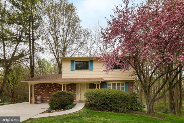 10103 Dundalk Street, FAIRFAX, VA 22032 (#VAFX1054026) :: Colgan Real Estate