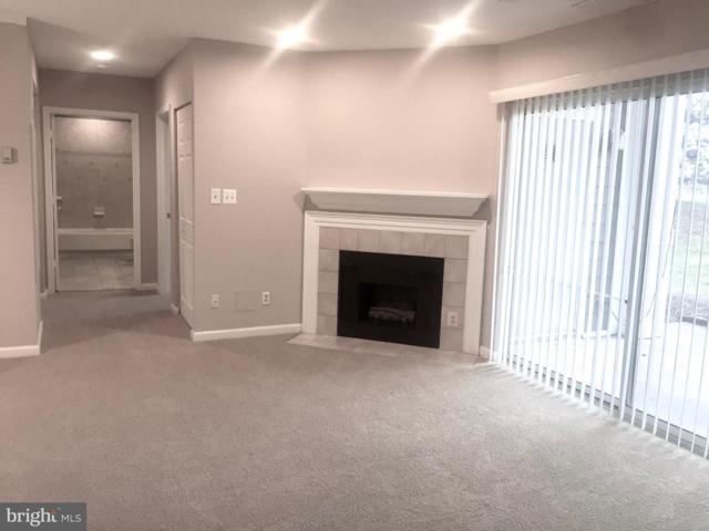 20303 Beechwood Terrace #102, ASHBURN, VA 20147 (#VALO380878) :: The Greg Wells Team
