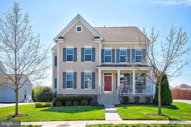 43137 Butterfly Way, LEESBURG, VA 20176 (#VALO380882) :: Network Realty Group