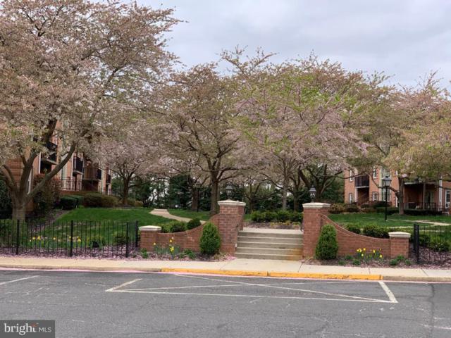 3334 Spring Lane B-36, FALLS CHURCH, VA 22041 (#VAFX1054042) :: Arlington Realty, Inc.