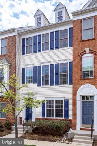 42807 Flannigan Terrace, CHANTILLY, VA 20152 (#VALO380906) :: Cristina Dougherty & Associates