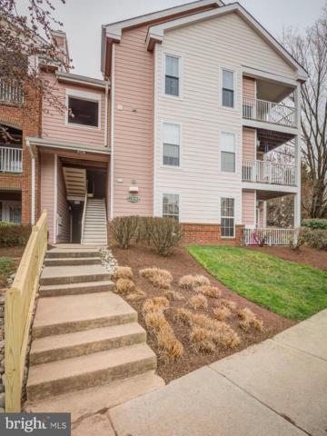 21014 Timber Ridge Terrace #303, ASHBURN, VA 20147 (#VALO380918) :: Pearson Smith Realty