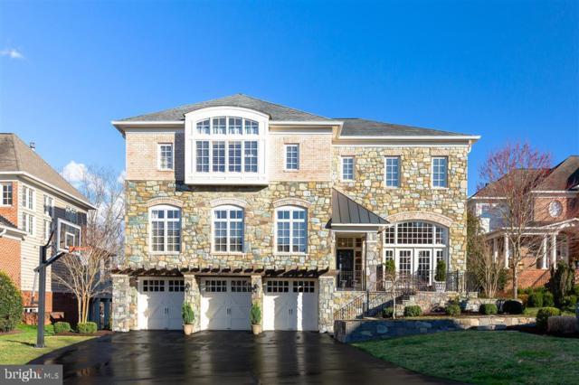18278 Riviera Way, LEESBURG, VA 20176 (#VALO380924) :: Colgan Real Estate