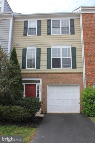 43005 Beachall Street, CHANTILLY, VA 20152 (#VALO380938) :: AJ Team Realty