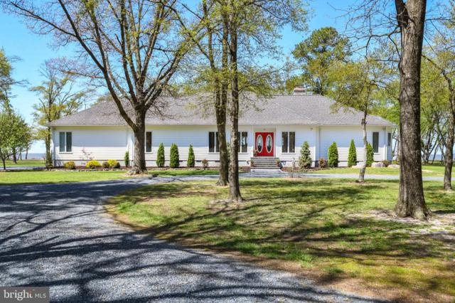10820 Shores Road, DEAL ISLAND, MD 21821 (#MDSO102090) :: RE/MAX Coast and Country