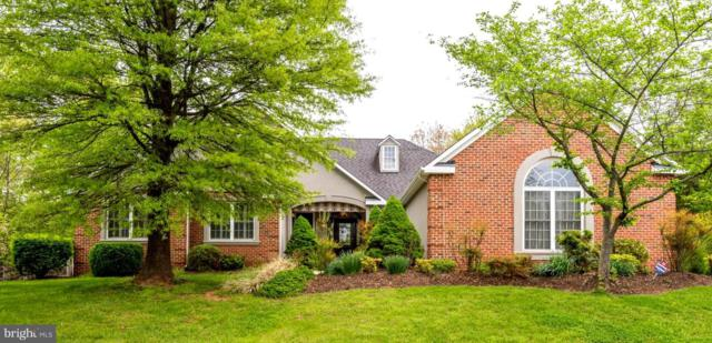12008 Holly Leaf Court, GREAT FALLS, VA 22066 (#VAFX1054166) :: Great Falls Great Homes