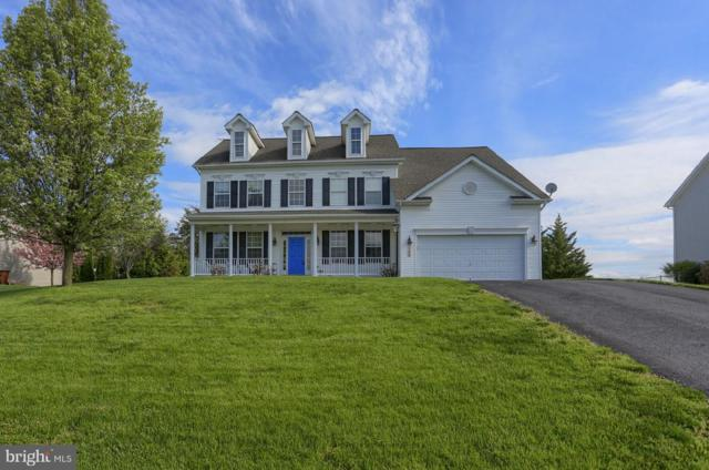 766 Shannon Drive N, GREENCASTLE, PA 17225 (#PAFL164818) :: ExecuHome Realty