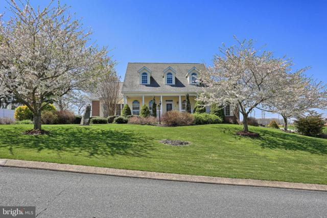 6 Amber Drive, DELTA, PA 17314 (#PAYK114718) :: Younger Realty Group