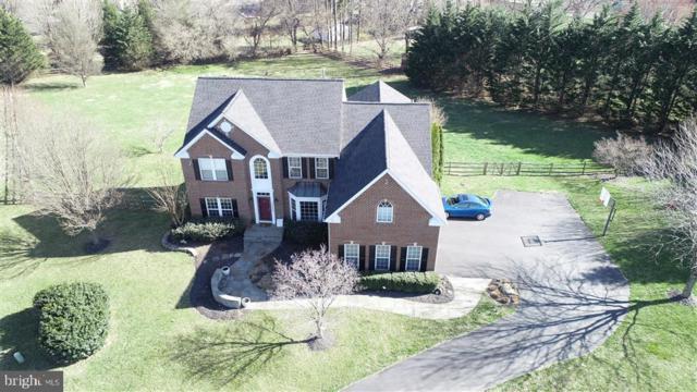 23605 White Peach Court, GAITHERSBURG, MD 20882 (#MDMC653200) :: Dart Homes