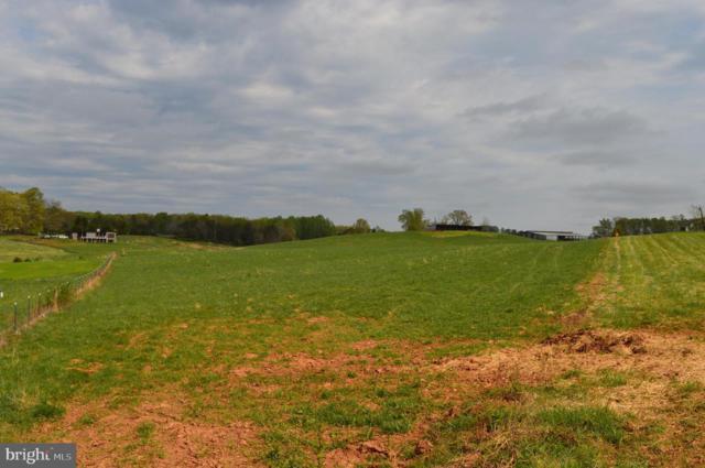 Clark Meadow Lane, CULPEPER, VA 22701 (#VACU138066) :: Network Realty Group
