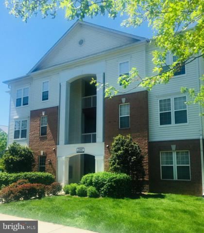 22687 Blue Elder Terrace #104, BRAMBLETON, VA 20148 (#VALO380978) :: Shamrock Realty Group, Inc