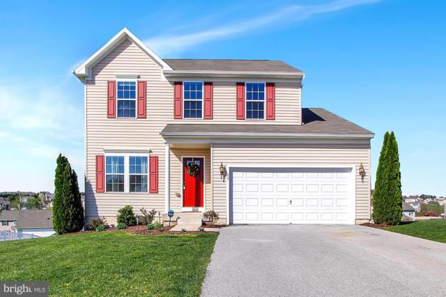 59 Flanders Court, HANOVER, PA 17331 (#PAYK114750) :: Teampete Realty Services, Inc