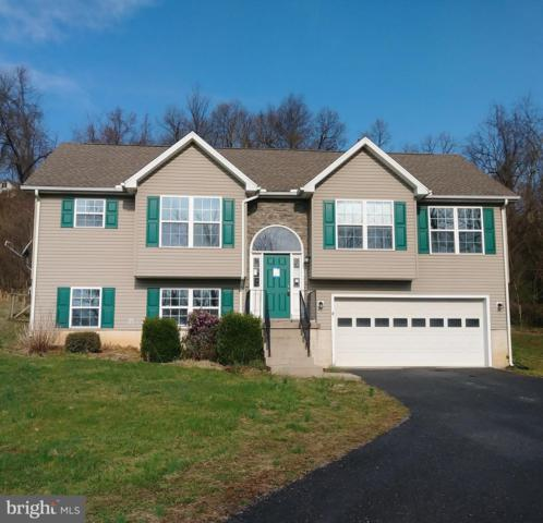 241 Herkimer Way, HEDGESVILLE, WV 25427 (#WVBE166946) :: Pearson Smith Realty