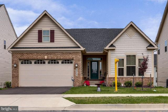 5944 Duvel Street, IJAMSVILLE, MD 21754 (#MDFR244530) :: Jim Bass Group of Real Estate Teams, LLC