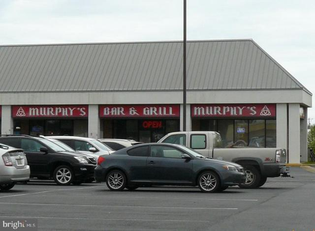 38224 Dupont Blvd Boulevard, SELBYVILLE, DE 19975 (#DESU138562) :: Brandon Brittingham's Team