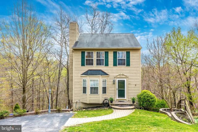10917 Oakcrest Circle, NEW MARKET, MD 21774 (#MDFR244544) :: The Maryland Group of Long & Foster