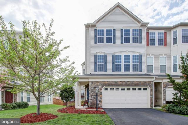 25080 Cypress Mill Terrace, ALDIE, VA 20105 (#VALO381018) :: Dart Homes