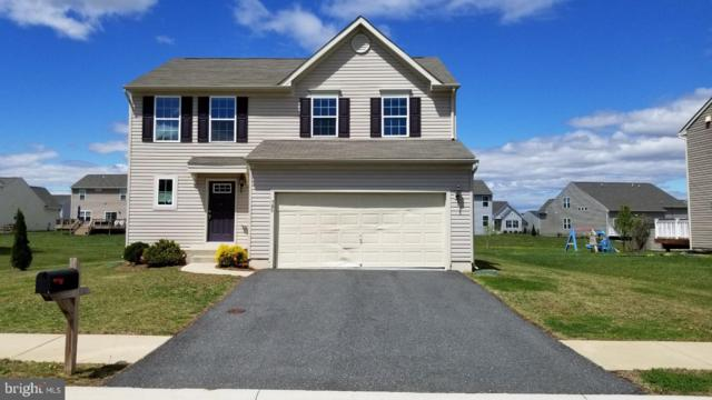 798 Coldwater Drive, CLAYTON, DE 19938 (#DEKT228030) :: Keller Williams Realty - Matt Fetick Team