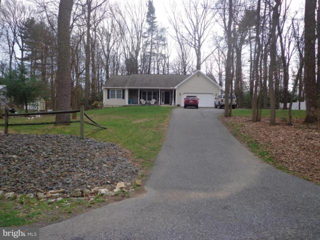 1777 Running Deer Drive, AUBURN, PA 17922 (#PASK125300) :: Ramus Realty Group