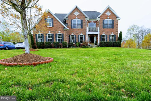 22578 Forest View Court, ASHBURN, VA 20148 (#VALO381074) :: The Vashist Group