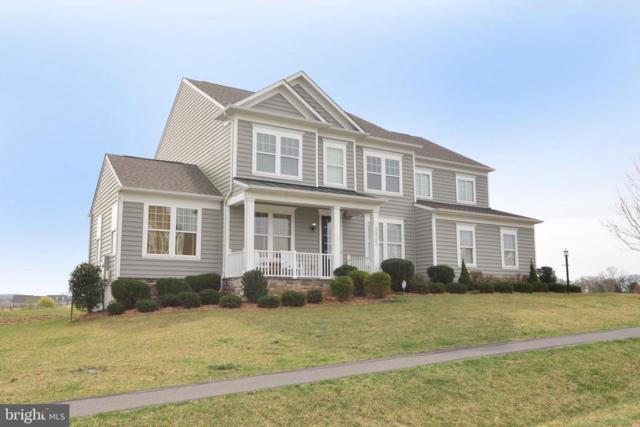 15742 Trongate Court, LEESBURG, VA 20176 (#VALO381090) :: The Redux Group