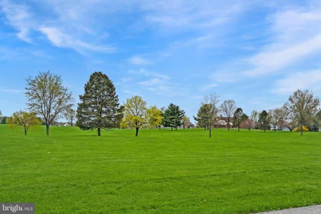 Lot 6 Grandview Drive, PALMYRA, PA 17078 (#PADA109320) :: The Joy Daniels Real Estate Group