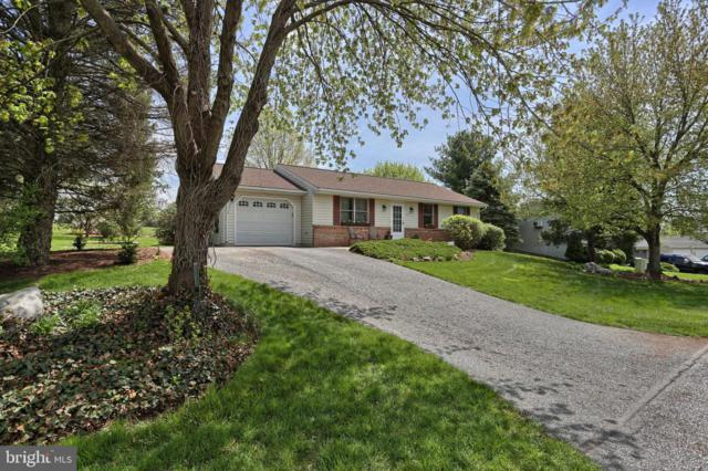 847 Franklin Drive, MANHEIM, PA 17545 (#PALA130790) :: The Heather Neidlinger Team With Berkshire Hathaway HomeServices Homesale Realty
