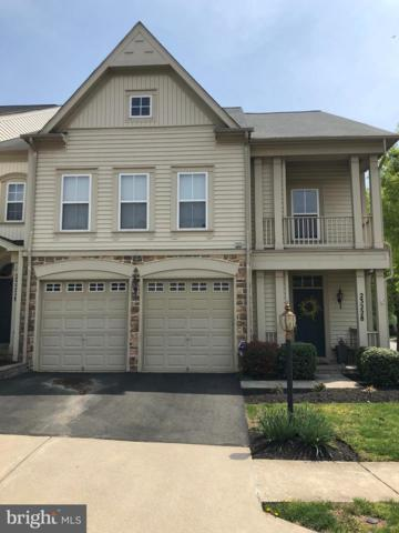23228 Washburn Terrace, BRAMBLETON, VA 20148 (#VALO381154) :: The Vashist Group