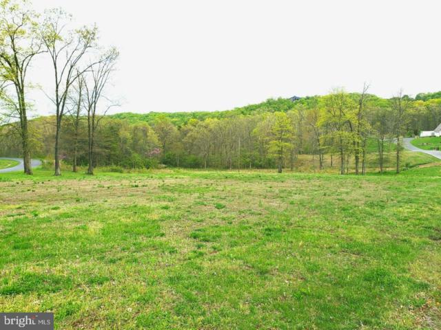 Lot 33, Section 5 Clearwater Dr., RIDGELEY, WV 26753 (#WVMI110130) :: The MD Home Team