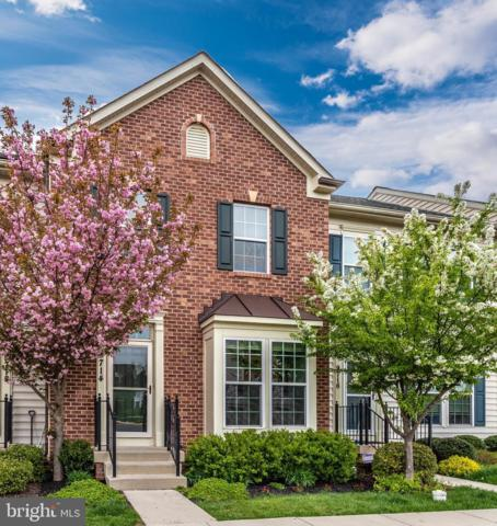 9714 Braidwood Terrace, FREDERICK, MD 21704 (#MDFR244666) :: Jim Bass Group of Real Estate Teams, LLC