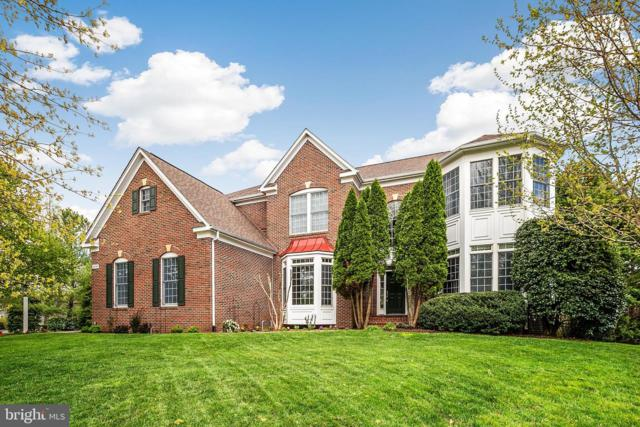 24048 Windy Hollow Court, ALDIE, VA 20105 (#VALO381252) :: Pearson Smith Realty