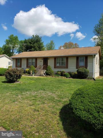5503 Rudy Lane, FREDERICKSBURG, VA 22407 (#VASP211468) :: RE/MAX Cornerstone Realty