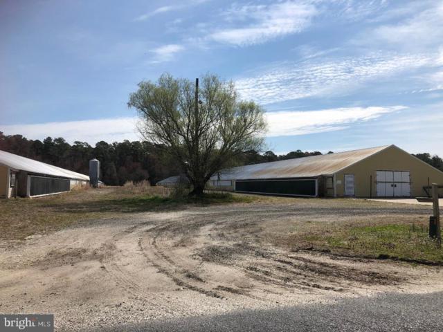 9435 Melson Church Road, DELMAR, MD 21875 (#MDWC102970) :: Brandon Brittingham's Team