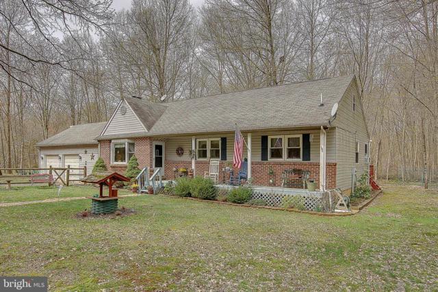 899 Lonely Cottage Road, UPPER BLACK EDDY, PA 18972 (#PABU465834) :: Bob Lucido Team of Keller Williams Integrity