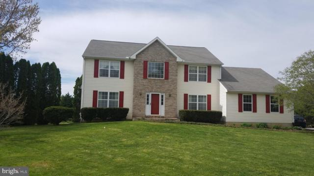 306 Chesapeake Canal Court, MIDDLETOWN, DE 19709 (#DENC476356) :: Brandon Brittingham's Team