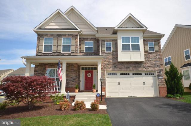 42532 Ash Tree Drive, ASHBURN, VA 20148 (#VALO381354) :: Pearson Smith Realty
