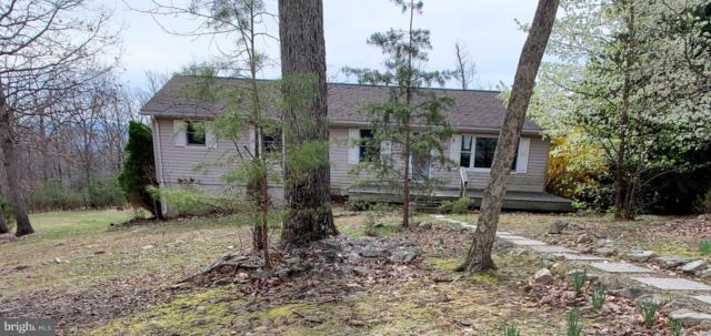 588 Turtle Hill Lane, MAURERTOWN, VA 22644 (#VASH115602) :: Wes Peters Group Of Keller Williams Realty Centre